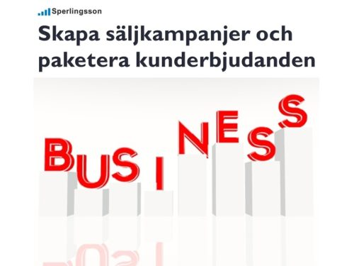 Säljutbildning online göra en säljkampanj | Stefan Sperlingsson | Lär dig bygga kundnöjdhet | Ring Sperlingsson direkt → → 0733-850216